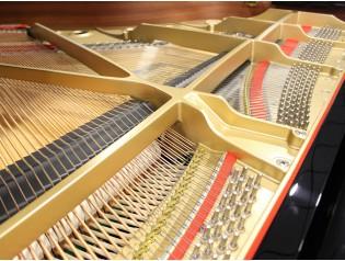 PIANO COLA GAMA ALTA PROFESIONAL RX3 GX3 C3 C3X