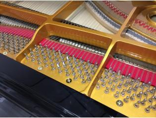 PIANO COLA NUEVO