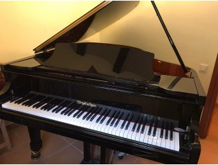Piano cola Wend & Lung Professional mod 178. Negro....