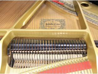 piano cola g3 c3 c3x
